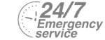24/7 Emergency Service Pest Control in Forest Gate, Upton Park, E7. Call Now! 020 8166 9746