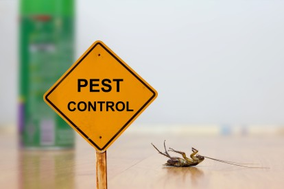 Pest Contol in Forest Gate, Upton Park, E7. Call Now 020 8166 9746